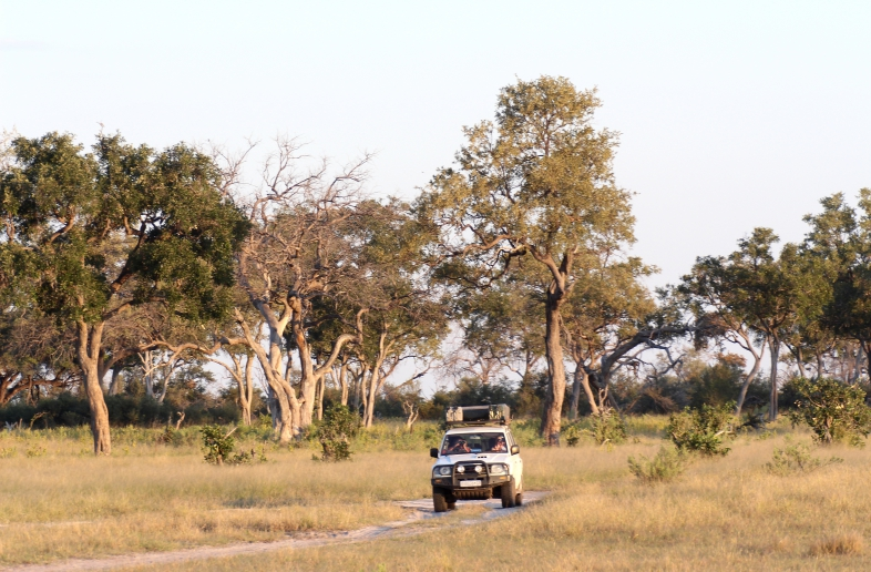 Botswana Safari 11 dagen Self Drive