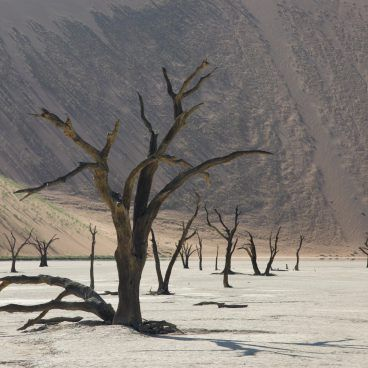Deadvlei Namibia self drive