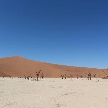 Zandduinen Namibie