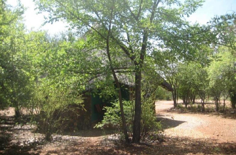 Otjitotongwe Cheetah Guest Farm