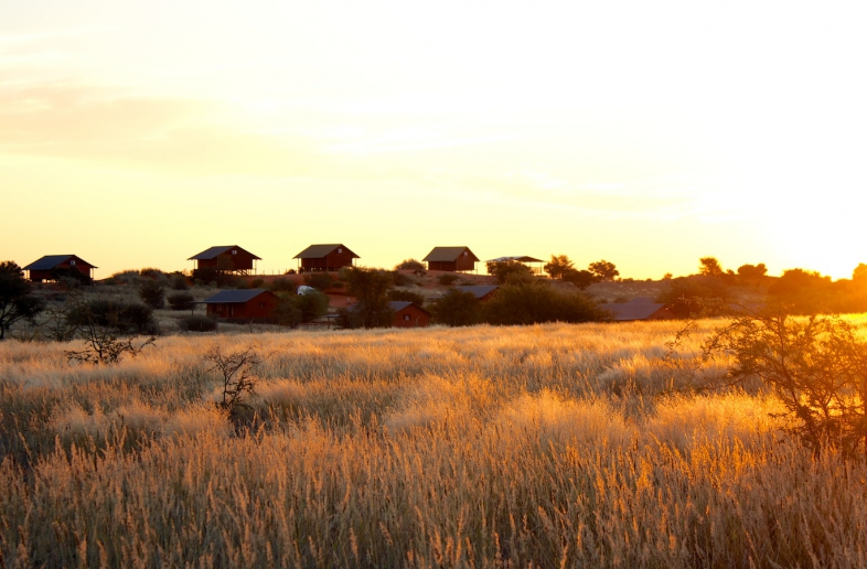 Bagatelle Kalahari Game Ranch – Campsite