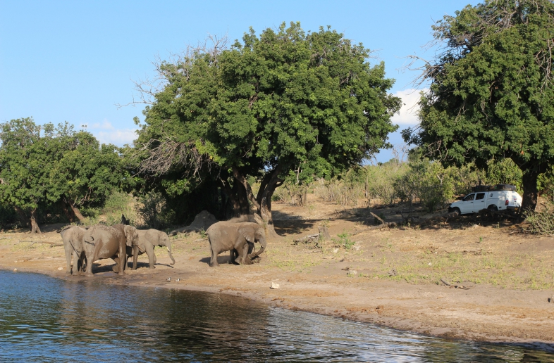 Big Five Chobe Lodge – Campsite