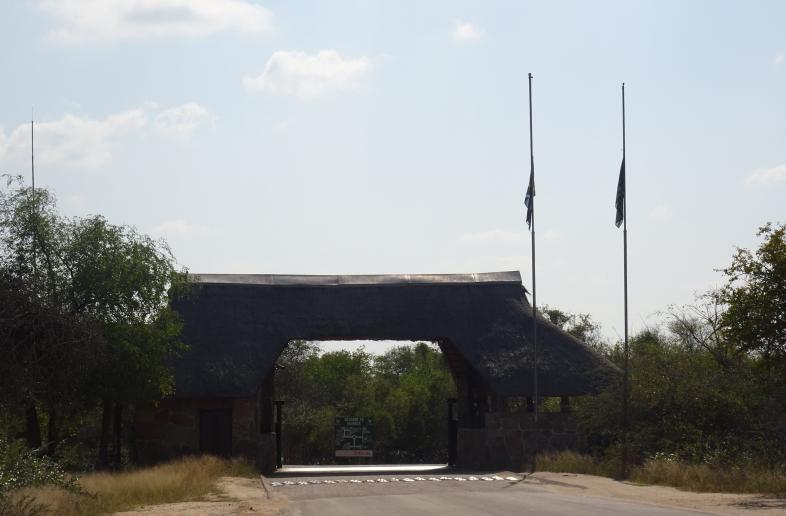 Skukuza Restcamp – Campsite
